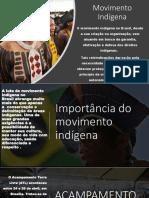 Movimento Indigena