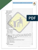 Tecnicas_de_estudio (1).docx