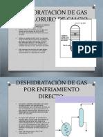 Deshidratación de Gas Con Cloruro de Calcio Lili (1)