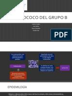 Estreptococo Del Grupo b
