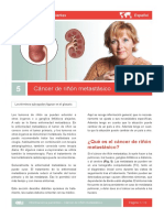 Cancer de Rinon Metastatic ES