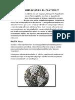 Contaminacion en El Platena 201