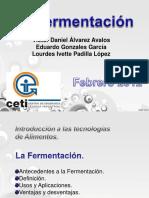 fermentacion.pptx