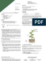 circulacionenlosseresvivos-131009093608-phpapp02.docx