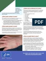 Scabies Fact Sheet Es