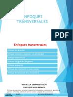 ENFOQUES TRANSVERSALES