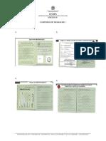 anexo-10-modelo-carteira-trabalho.pdf
