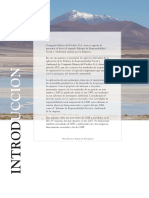 Cap Mineria Informe Rse 2007