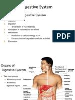 Digestive System.pptx