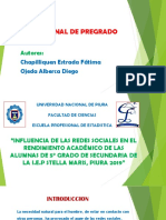 Diapositivas de Proyecto Redes Sociales (1)