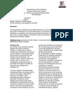 Microbiologia Tinciones Especiales