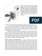Translate Kaplan Ed 8.docx