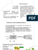 bioetanoparte3