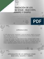 Optimización de Los Sistemas WSUD
