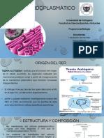 Reticulo endoplasmico Rugoso.pptx