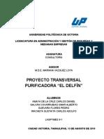 PROYECTO TRANSVERSAL DE CONSULTORÍA.pdf