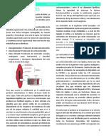 7. Corticoides (1).docx