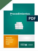 PROCEDIMIENTOS DERECHO PROCESAL II