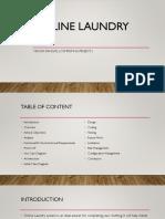 Online laundry.pptx
