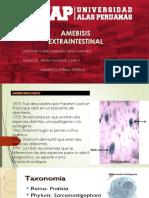 Amebiasis Extraintestinal Ok