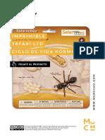 Mumuchu Imprimible Safari Ciclo de Vida Hormiga