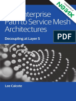 The Enter to  Mesh Architectures