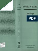 Heidegger, Martin. Caminhos de Floresta