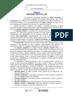 2.- SISTEMA MUSCULAR.pdf