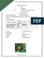 FERIA 2019 Beneficios de La Cascara de Cacao