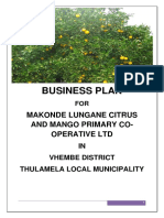 Mankhili Lungane Business Plan