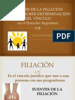Filiación. Fuentes y Determinación CCC