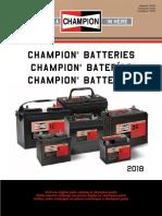 Champion Batterie