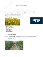 klasifikasi tanaman