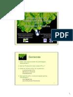 Conceptos y Practica P+L Presentación