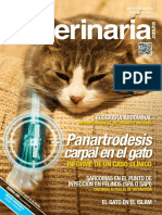 Vanguardia veterinaria