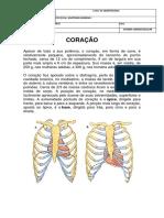 CORAÇÃO PDF.pdf