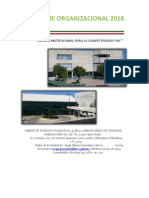 Informe Organizacional