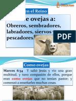 De Ovejas a.pptx