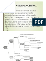 3 Sistema Nervioso Central
