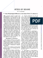 Genetics of Sesame