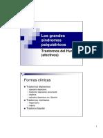 grandes sindromes.pdf