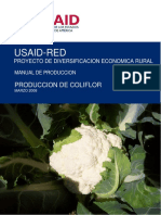 159084515-Manual-de-produccion-de-coliflor.pdf