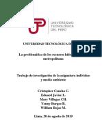 TRABAJO FINAL DE  INDIVIDUO Y MEDIO AMBIENTE.docx