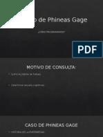 El Caso de Phineas Gage
