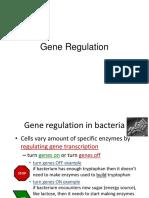 Gene Regulation.ppt