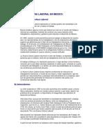 LA_NUEVA_CULTURA_LABORAL_EN_MEXICO.pdf