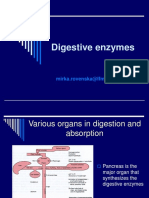 digestive.ppt