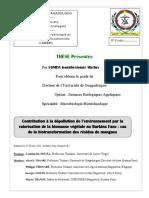 Mangues 1.pdf
