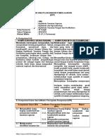 RPP Agribisnis tanaman sayuran 11