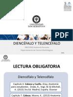 Clase 33 Diencefalo y Telencefalo_DBIO1050 (1).pptx